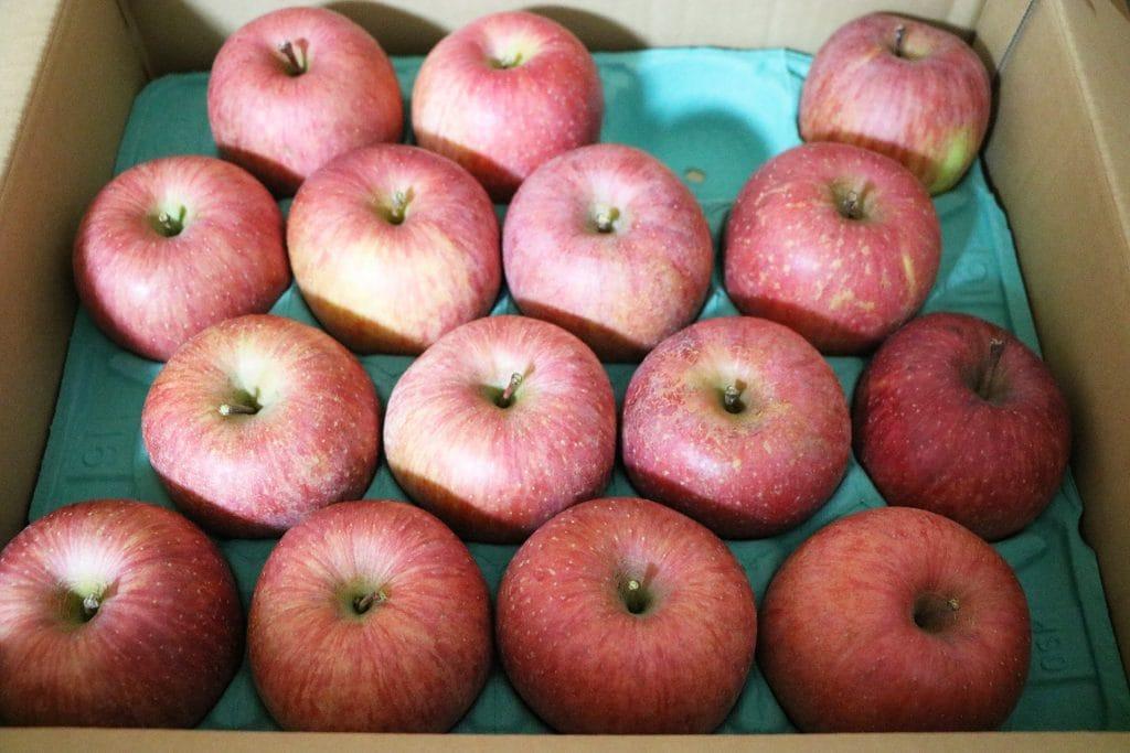 山形県寒河江市のふるさと納税の返礼品はりんご